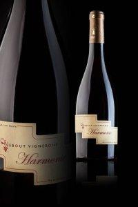 02 Harmonie Domaine Nebout Vins Saint pourcain Allier Auvergne
