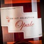 07 Opale Domaine Nebout Vins Saint pourcain Allier Auvergne