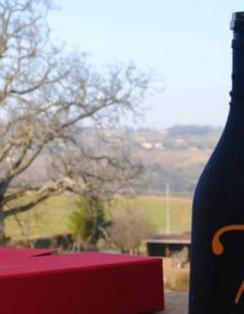 01 Animation oenologique Domaine Nebout Vins Saint pourcain Allier Auvergne